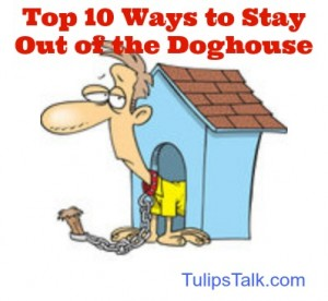 """Eden Florist's Top ten ways to stay out of doghouse"""