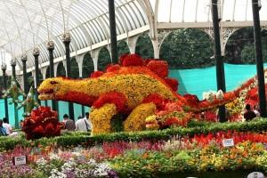 """Amazing Botancal Gardens of the World Lalbagh, Banaluru India"""